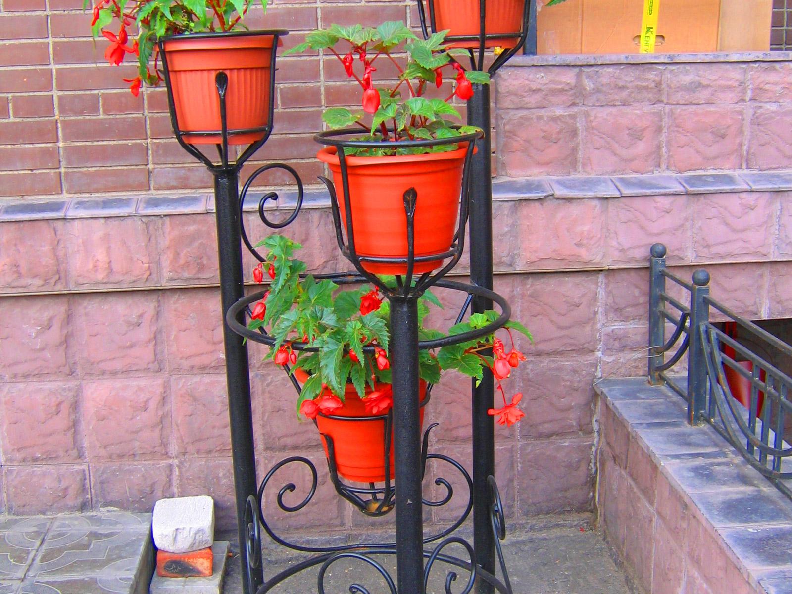 Фото кованных стоек для цветов